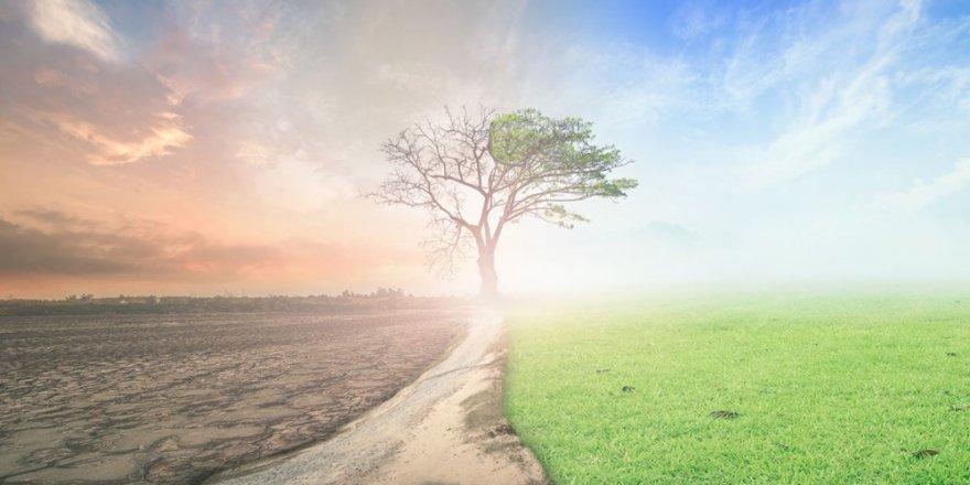 6 bin 500 yılda gerçekleşen soğumayı küresel ısınma tersine çevirdi