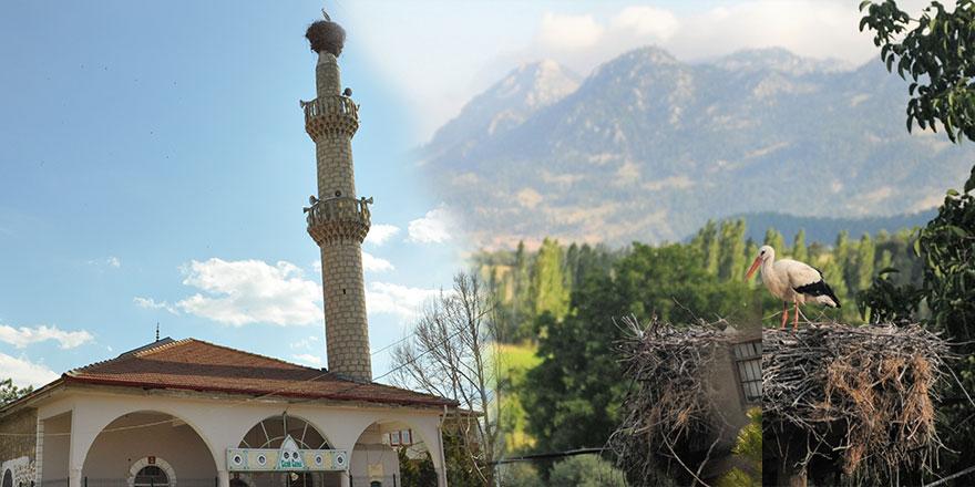 60 yıllık misafirleri rahatsız olmasın diye minareyi onarmıyorlar