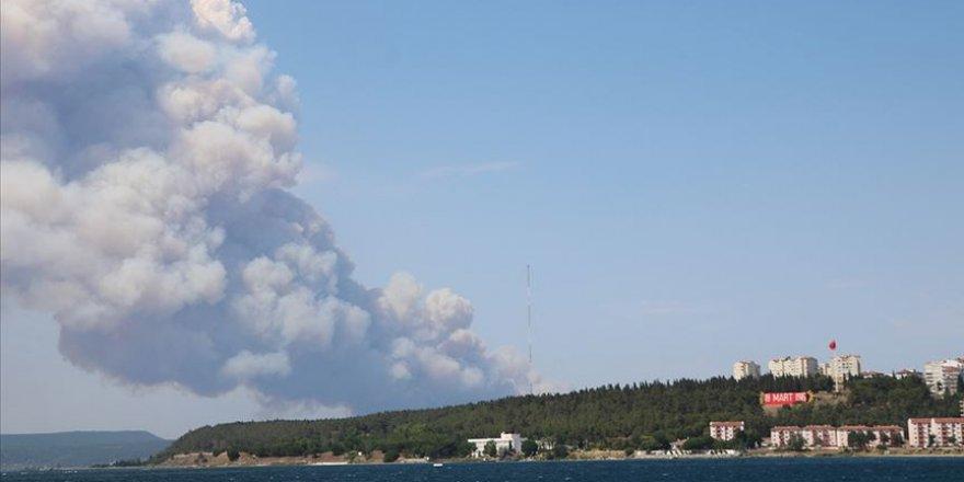 Gelibolu'da ormanlık alanda yangın çıktı