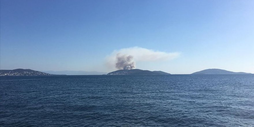 Heybeliada'da orman alanda yangın çıktı