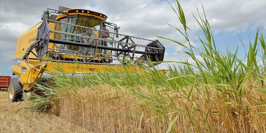 30 bin ton buğdayın kaybolması biçerdöver denetimleriyle önleniyor