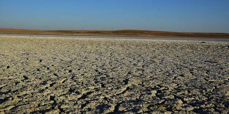 Türkiye'de Küresel ısınma için büyük araştırma başlıyor