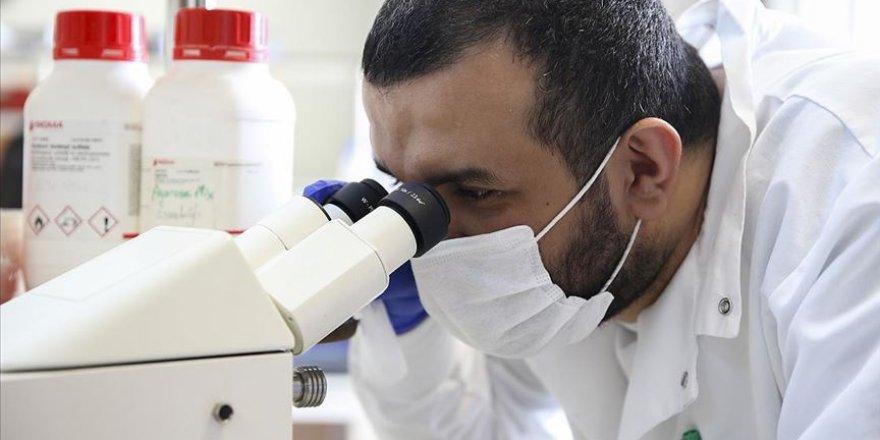 Kansere karşı savaşma kabiliyetini yitirmemiş yeni hücre keşfedildi