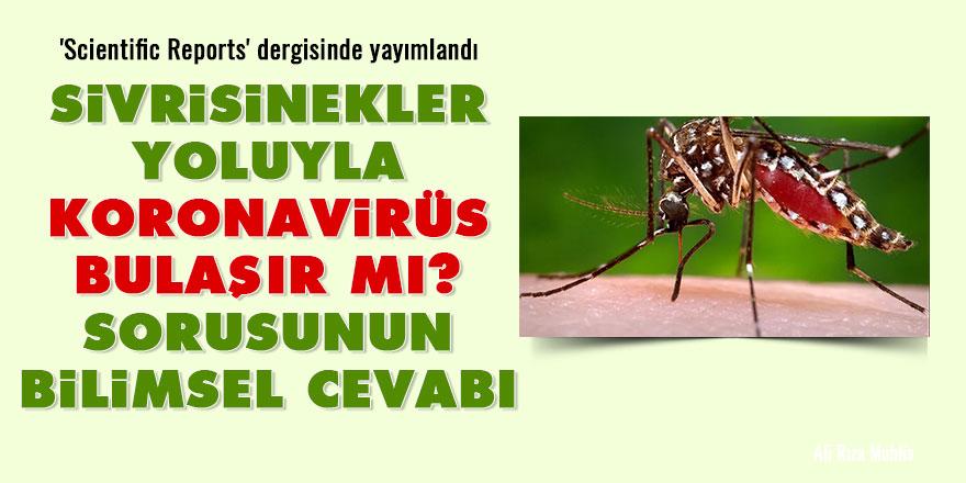 Sivrisinekler yoluyla koronavirüs bulaşır mı? sorusunun bilimsel cevabı
