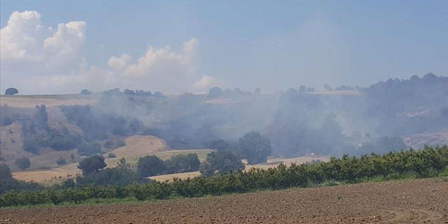 Çanakkale'de ormanlık alanda yangın çıktı