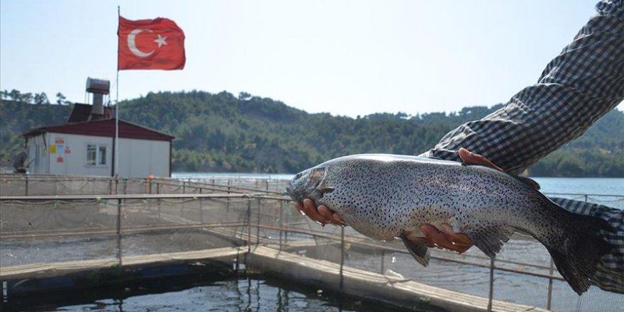 Denizsiz kentten 25 milyon dolarlık balık ihracatı