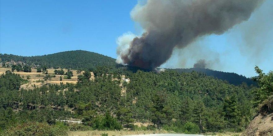 12 ilde çıkan 19 orman yangınının 15'i kontrol altına alındı