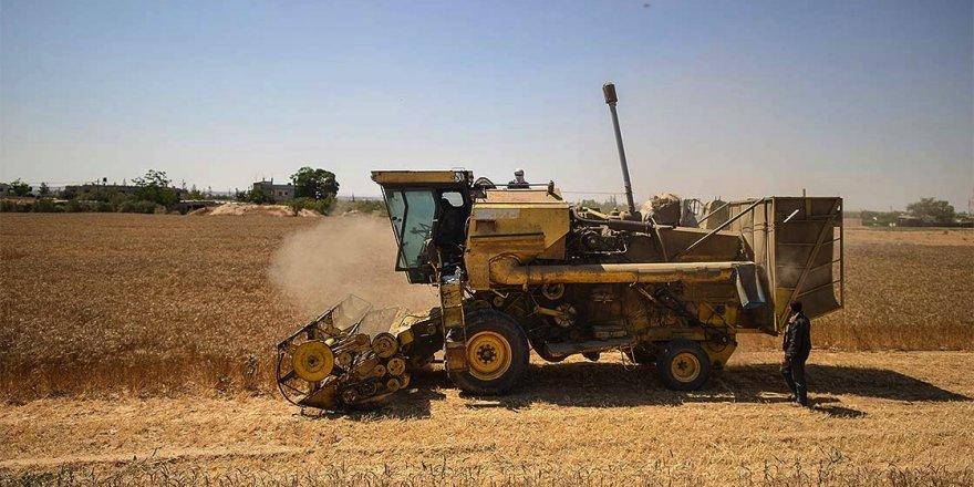Gazze'de geliştirilen biçerdöver çiftçi hem cebinden hem de vaktinden tasarruf etti