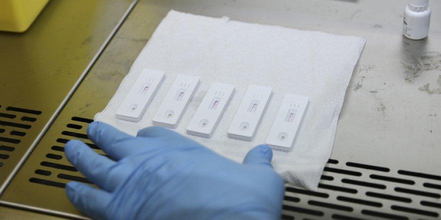21 ülkeye ürettiği Kovid-19 tarama testini sattı