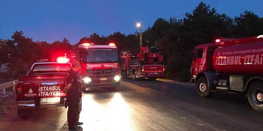 İstanbul'da ormanlık alanda yangın çıktı