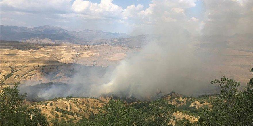 Siirt'te orman yangını çıktı