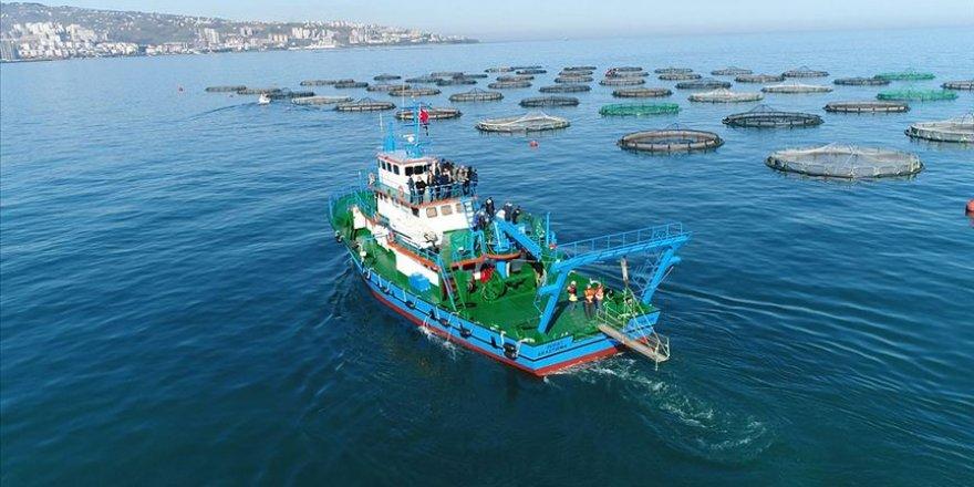 Trabzon Karadeniz'in en çok ihracat gerçekleştiren ili oldu
