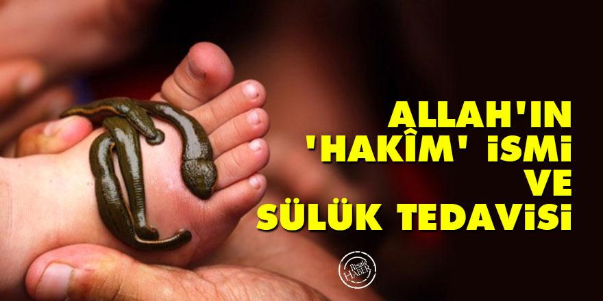 Allah'ın 'Hakîm' ismi ve sülük tedavisi