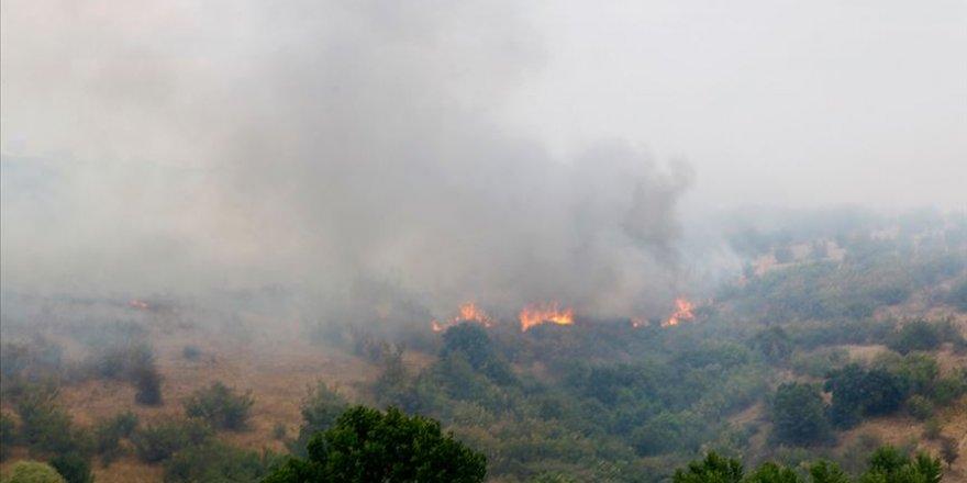 Bulgaristan-Türkiye sınırında çıkan yangın söndürüldü