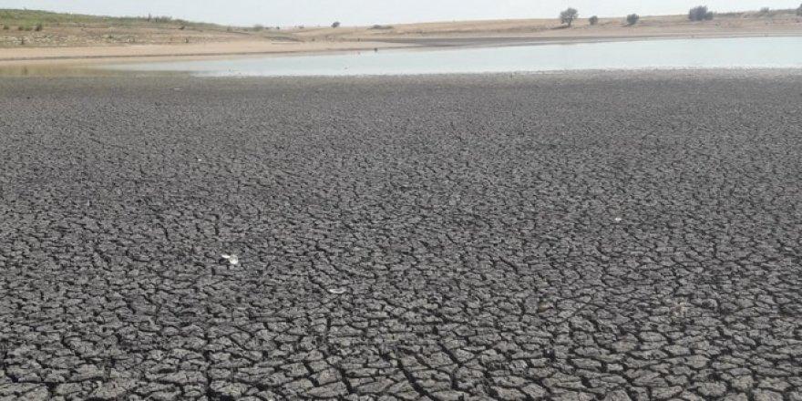 Kurtbey Göleti yok olma riskiyle karşı karşıya