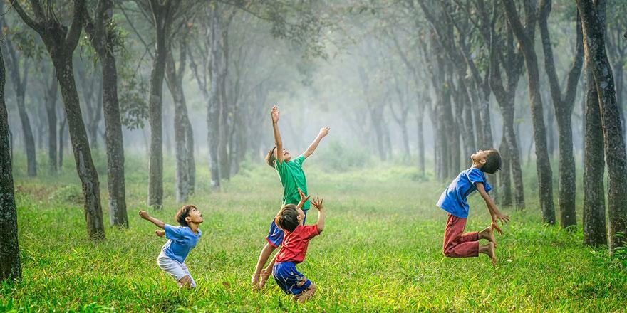 Yeşil alanlarda büyüyen çocukların zeka seviyeleri daha yüksek