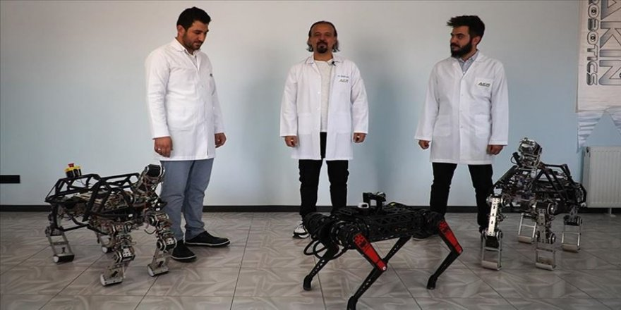Dört ayaklı robot 'Arat' geliştirilmeye devam ediyor