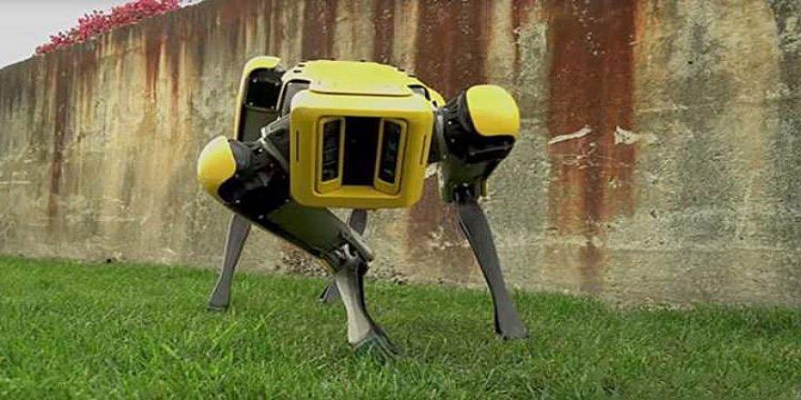 SpotMini'yi üreten Boston Dynamics şirketi hakkında bilinmesi gerekenler
