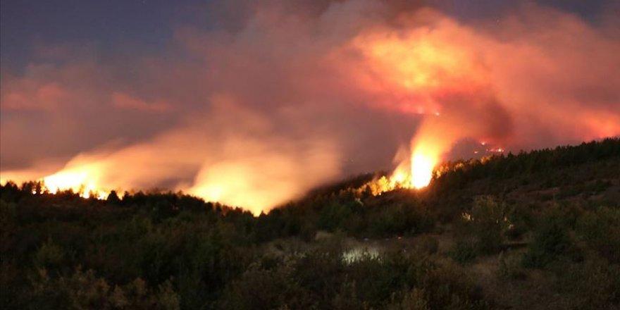2020'de 29 bin 487 futbol sahası büyüklüğünde ormanlık alan yandı