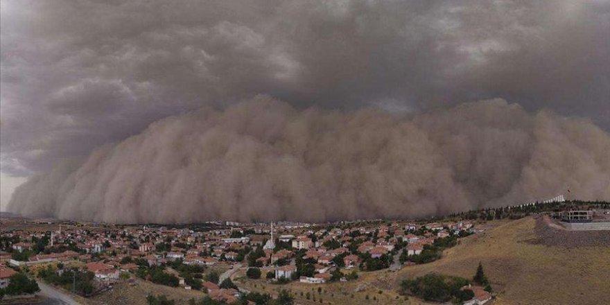 Kum fırtınasına karşı bitkilendirme önerisi