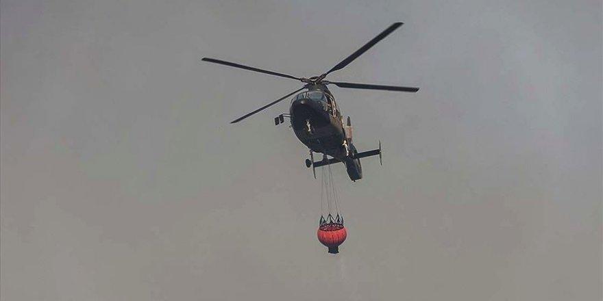 Brezilya'daki yangınlarda yaklaşık 1,5 milyon hektar sulak alan yandı