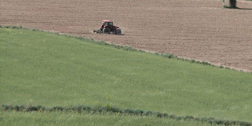 Hazineye ait tarım arazileri topraksız ve yeterli toprağı olmayan çiftçilere kiralanacak