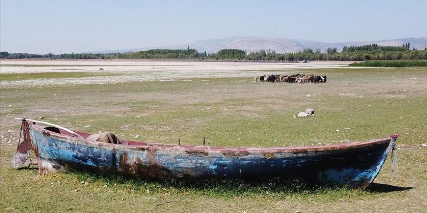 Nilüferleriyle ünlü Işıklı Gölü'nde su seviyesi düştü