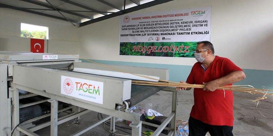 Türk mühendisleri kenevir lif sıyırma makinesi geliştirdi