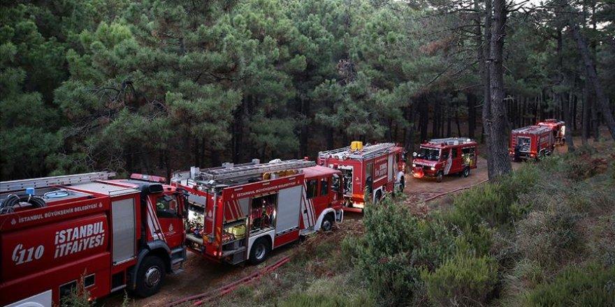 Kartal'da ormanlık alanda çıkan yangın kontrol altına alındı