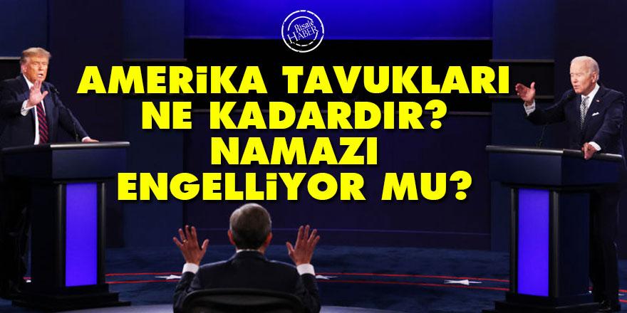 Said Nursi soruyor: Amerika tavukları ne kadardır? Namazı engelliyor mu?