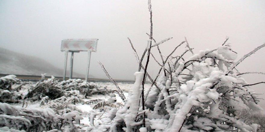Bolu Kartalkaya'da kar yağışı başladı