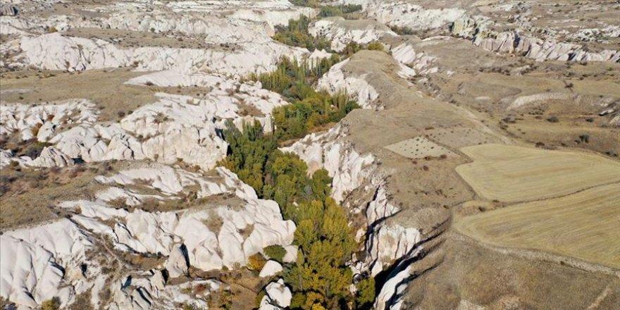 Kapadokya'nın gözbebeği Ürgüp'teki Gomeda Vadisi doğa tutkunlarını ağırlıyor