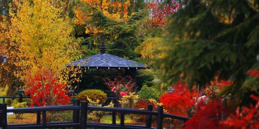 Konya'daki Kuğulu ve Japon Parkı hazan renklerine büründü