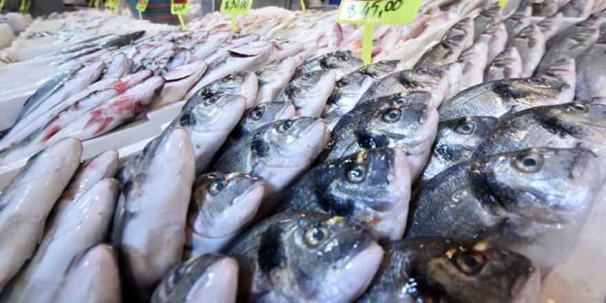 Türkiye'de balık tüketimi oldukça düşük
