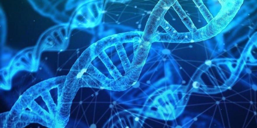 Akraba evliliklerine bağlı hastalıklarda '21 aday gen' keşfedildi