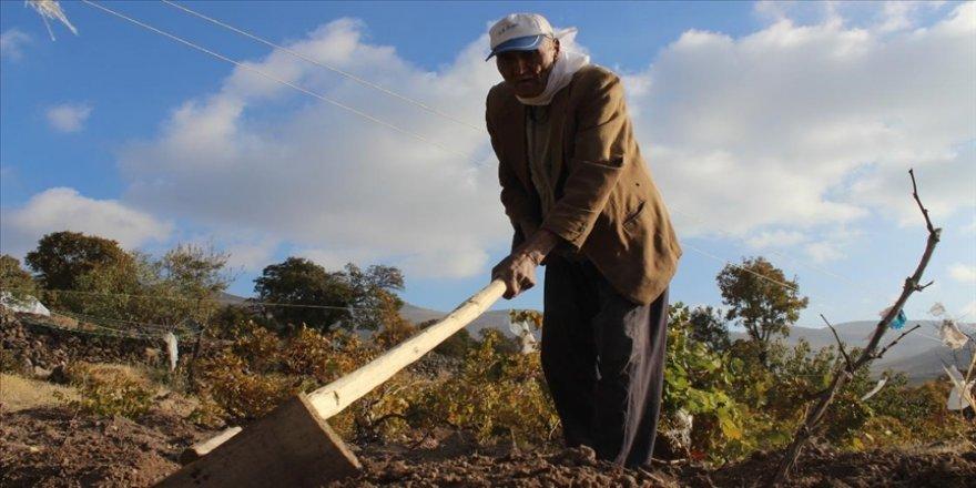 88 yaşındaki Aşır dede: Sağlığımı önce Allah'a sonra da sağlıklı beslenmeye borçluyum