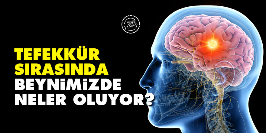 Tefekkür sırasında beynimizde neler oluyor?