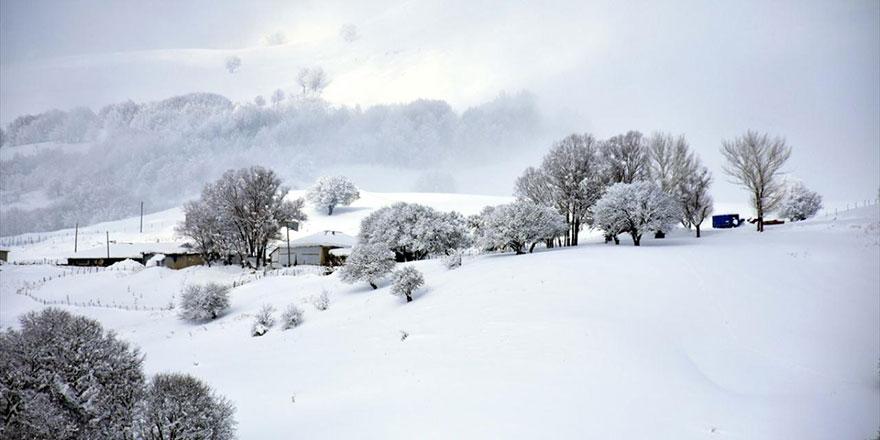 Kar, soğuk hava ve kırağı ile oluşan manzara