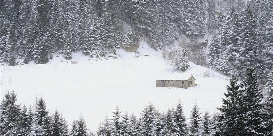 Tarihi İpek Yolu'ndaki Zigana Dağı'nda kış güzelliği yaşanıyor