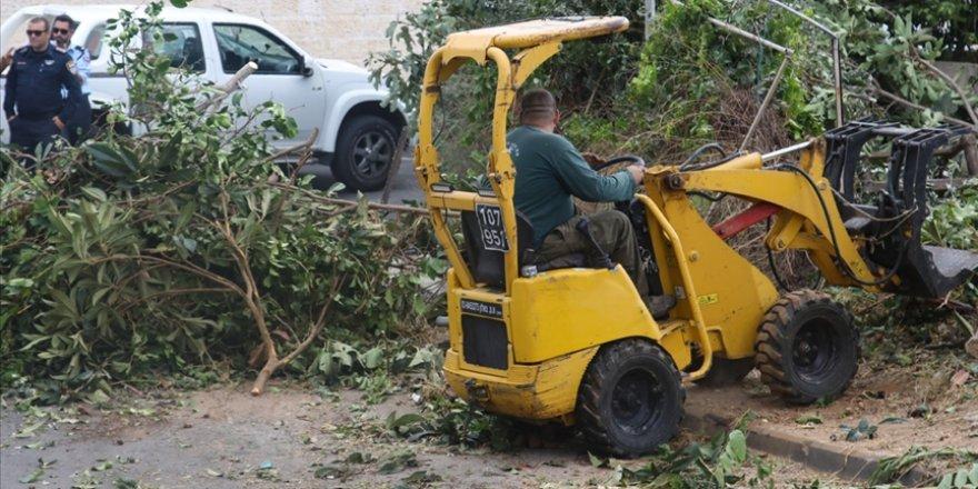 İsrail askerleri Batı Şeria'daki ormanlık alanda binlerce ağaca zarar verdi