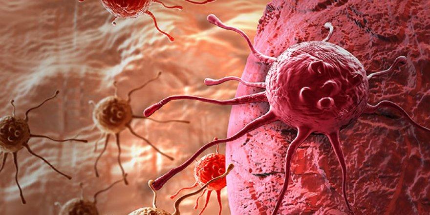 Geçen yıl 700 binden fazla kanser vakasının sebebi alkol