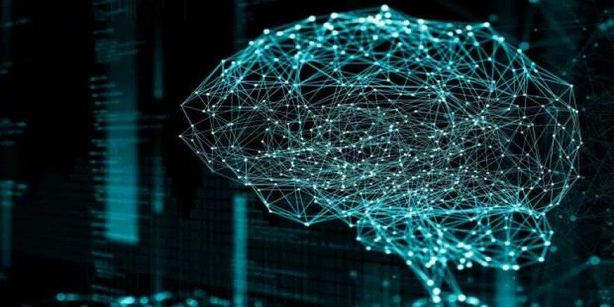 Japon bilim adamları, beyinde korkuyu yok edip cesareti artırmanın yolunu buldu