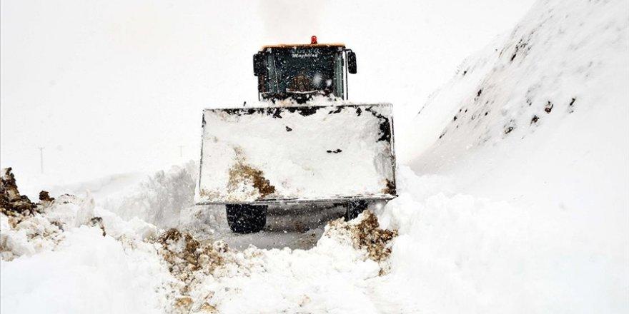 Beyaz bereket: Kar kalınlıkları ortalama insan boyunu aştı