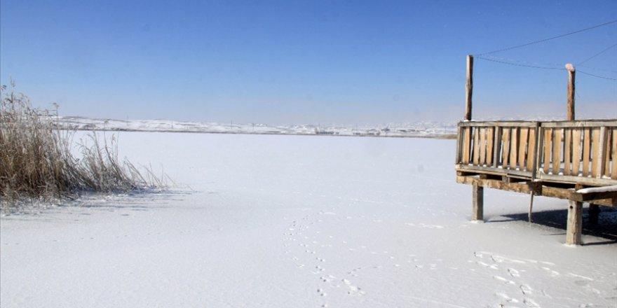 'Kesin korunacak hassas alan' ilan edilen Hafik Gölü'nün yüzeyi buz tuttu
