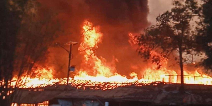 Sibirya'da orman yangınları: 1.5 milyon hektarlık alan küle döndü