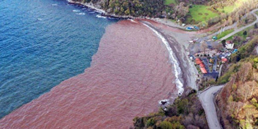 Zonguldak'ta denizin rengi çamura döndü