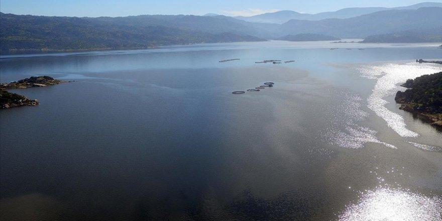 Adnan Menderes Barajı ekonomiye 2,2 milyar liralık katkı sağladı