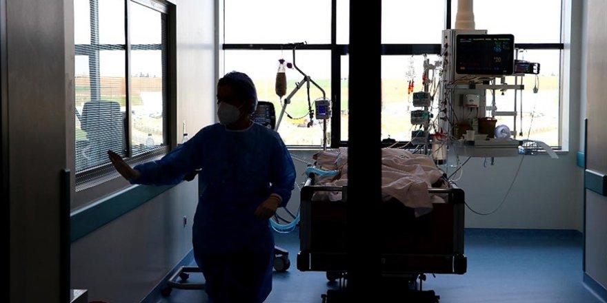 Kovid-19'dan 52 bin 184 kişinin tedavisi/karantinası tamamlandı, 288 kişi hayatını kaybetti