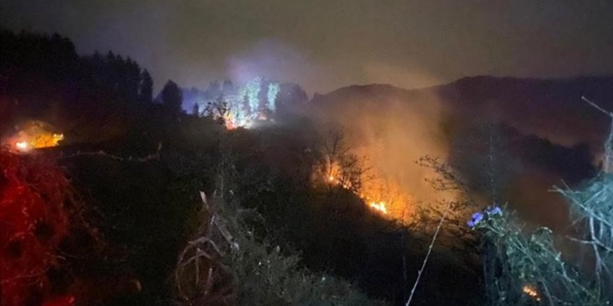 Rize'de orman yangını çıktı