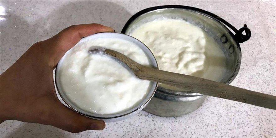 Sağlıklı bir bağışıklık sistemi için 'kefir ve kefirli yoğurt tüketin' tavsiyesi